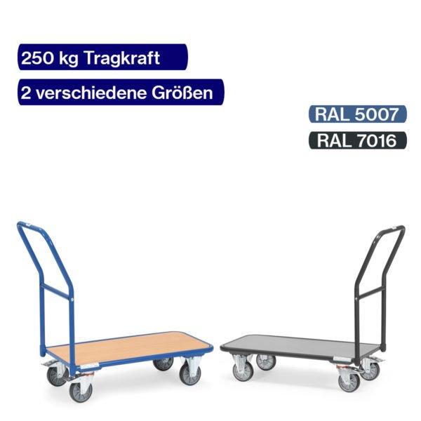 Magazinwagen 250 kg Grau und Blau