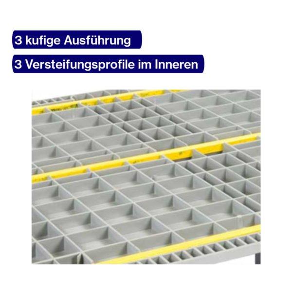 Hygienepalette 1200 x 1000 mm mit Versteifungsprofilen
